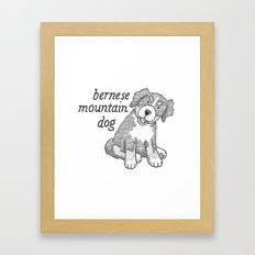 Dog Breeds: Bernese Mountain Dog Framed Art Print