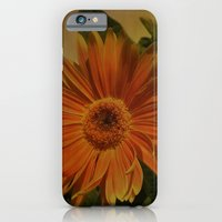 The Beauty Of Nature iPhone 6 Slim Case