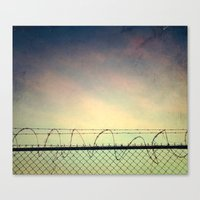 BARBWIRE BLUES Canvas Print