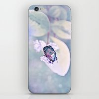 SCARABÉE iPhone & iPod Skin