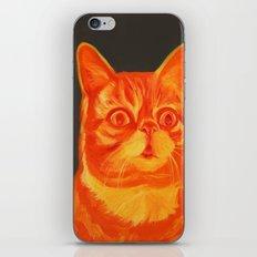 Gar-bub iPhone & iPod Skin