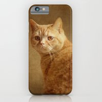 iPhone & iPod Case featuring Cat by mexi-photos