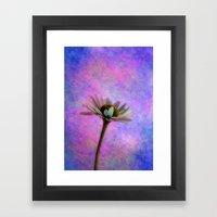 Daisy Skies Framed Art Print