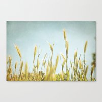 Hazy Lazy Skies Canvas Print