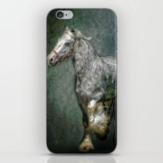 THE SILVER GYPSY iPhone & iPod Skin