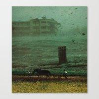 the rainy season Canvas Print
