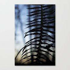 Fern at Dusk Canvas Print