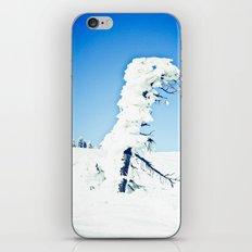 Snow Blown iPhone & iPod Skin