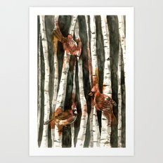 Cardinal Collection Art Print