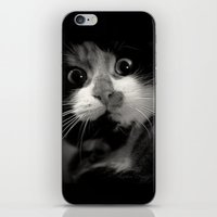 Le Miroir iPhone & iPod Skin