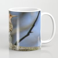 Northern Flicker Mug