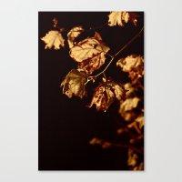 Midnight Leaves Canvas Print