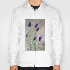Lavender.... Hoody