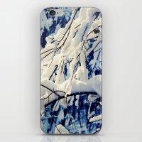 Amazing Winter iPhone & iPod Skin