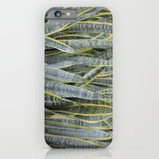 Snake Plants iPhone 6s Slim Case