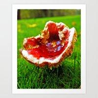 Art Print featuring Washington State mushroom by Vorona Photography