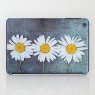 Three Marguerites iPad Case