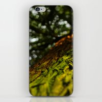 Green With Envy  iPhone & iPod Skin