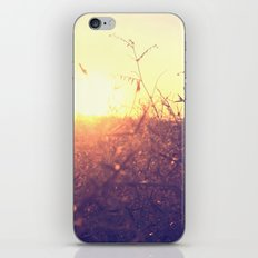Evening in Summer iPhone & iPod Skin