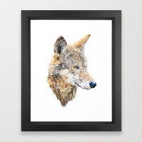 Wolf Head 2 Framed Art Print