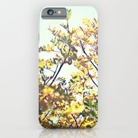 Fall Sun iPhone 6 Slim Case