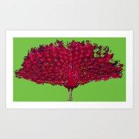 Peacock - Red Art Print
