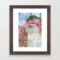 Cascade of Pink Roses Framed Art Print