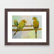 Three Parakeets Framed Art Print
