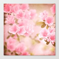 Thinking Springtime Canvas Print