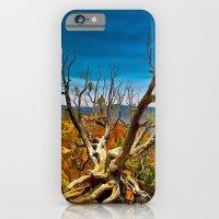 Bryce Canyon National Park, Utah, USA iPhone 6 Slim Case