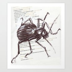 Black Beetle Art Print