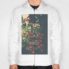 Summer Roses Series  - I -   Hoody