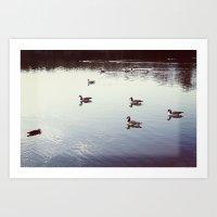 Geese 2 Art Print