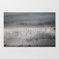 Mountain Morning  Canvas Print