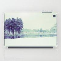 Mirror Lake iPad Case