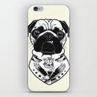 Dog - Tattooed Pug iPhone & iPod Skin