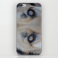 Cooper's Eyes (For Devices) iPhone & iPod Skin