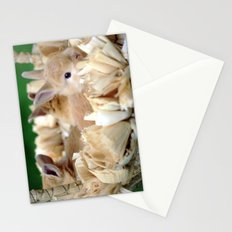 Bunnies In A Basket Stationery Cards