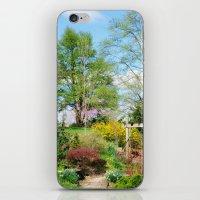 Spring Garden Setting iPhone & iPod Skin