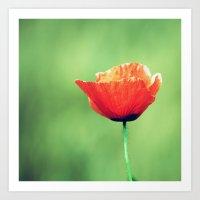 Vintage Summer - Poppy 2 Art Print
