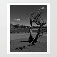 Desert Shadows Art Print
