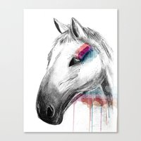 Rainbow Horse Canvas Print