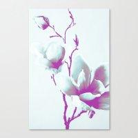 Magnolia Art Canvas Print