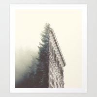 Flatiron & the Woods Art Print