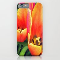 iPhone & iPod Case featuring Coral Tulips in Bloom by Allison corn