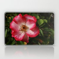 Pink Flower Laptop & iPad Skin