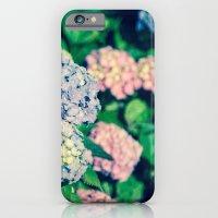 Purples iPhone 6 Slim Case