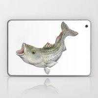 Striped Bass Laptop & iPad Skin