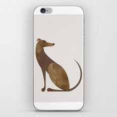 Greyhound iPhone & iPod Skin