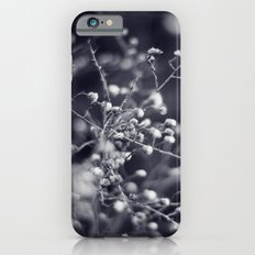 Winter Aster in Black and White Slim Case iPhone 6s